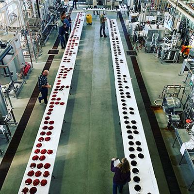 Caneberry taste testing in FST pilot plant