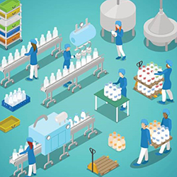 Graphic image of women working in dairy plant