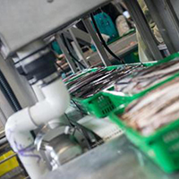 Image of commercial food processing line
